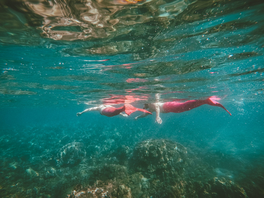 Mermaid Tour in Maui with Hawaii Mermaid Adventures