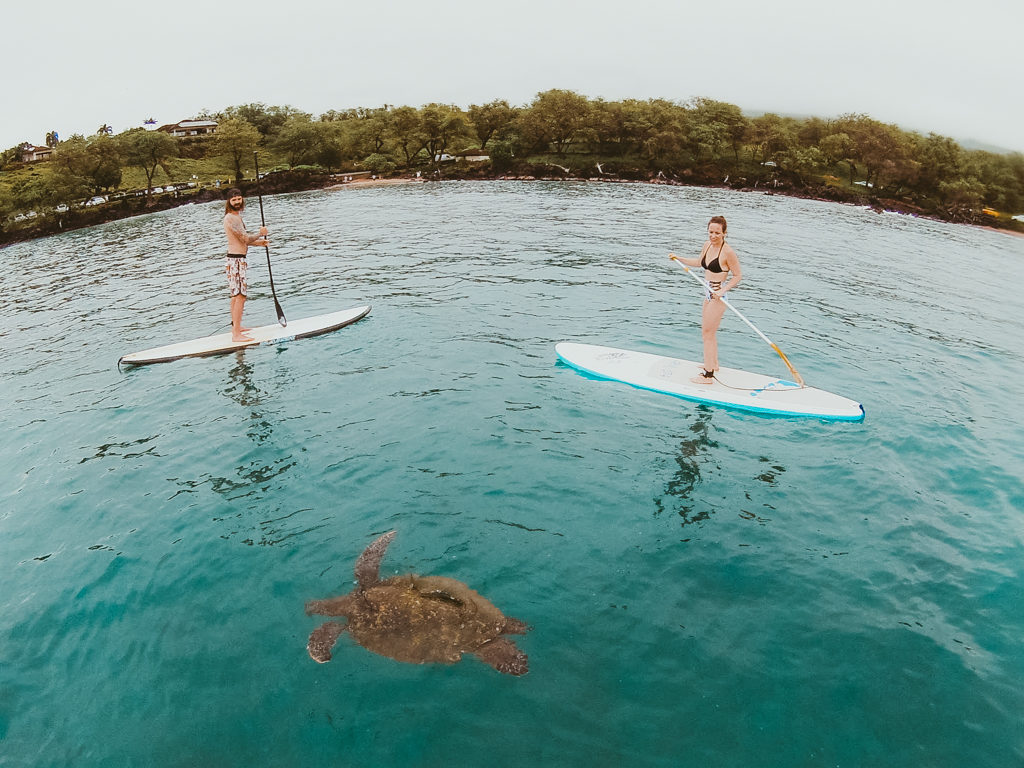 Maui SUP lessons with Maui Stand Up Paddle Boarding