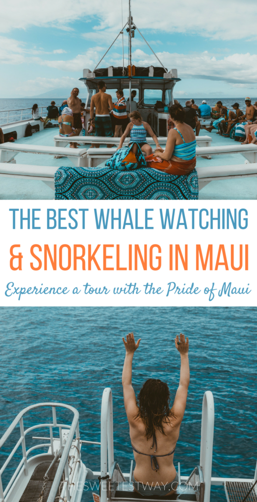 Maui Whale Watching Tour with Pride of Maui: Experience whale watching, snorkel at Maui's best snorkel spots, and enjoy a BBQ lunch and open bar while enjoying views of Maui from the water. #maui #hawaii #whalewatching