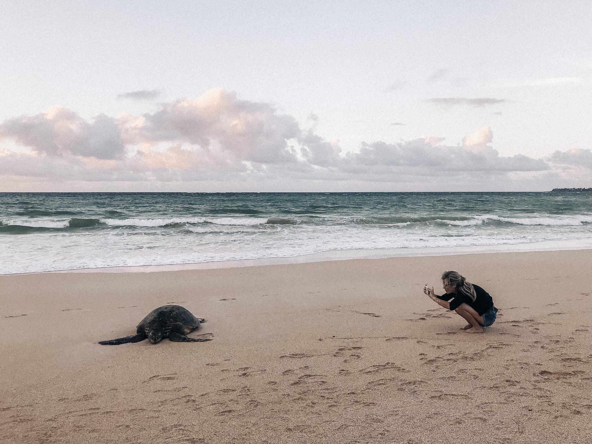 Tourisme responsable à Maui